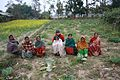 Helping rural women farmers in Nepals Terai (8424373398).jpg