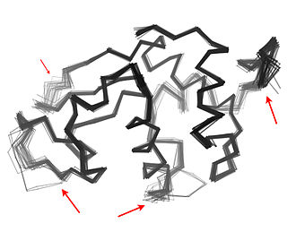 "Protein dynamics - An ""ensemble"" of 44 crystal structures of hen egg white lysozyme from the Protein Data Bank, showing that different crystallization conditions lead to different conformations for various surface-exposed loops and termini (red arrows)."