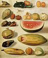 Hermenegildo Bustos - Still life with fruit (with scorpion and frog) - Google Art Project.jpg