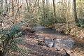Hildener Heide 2016 153.jpg