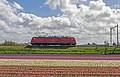 Hillegom DBS 189 028 op weg naar Kijfhoek (13831027575).jpg