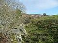 Hillside above Ballynastockan - geograph.org.uk - 728937.jpg