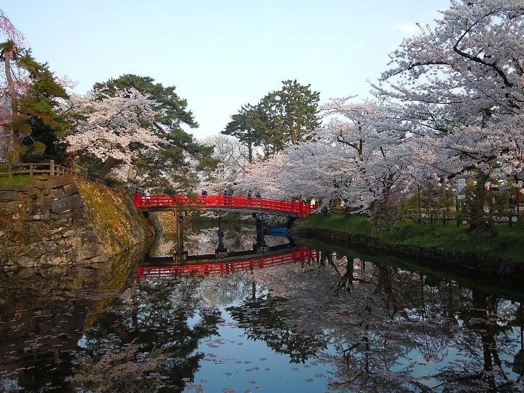 Hirosaki Park (during the sakura) - panoramio (8)