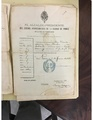 Historical document, Passport given by the Ponce municipal government to travel to Santo Domingo.pdf