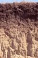 Holdrege soil.PNG