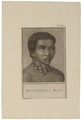 Homo sapiens - Houzouanaman, Zuid-Afrika - 1700-1880 - Print - Iconographia Zoologica - Special Collections University of Amsterdam - UBA01 IZ19400113.tif