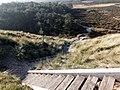 Hostbjerg Treppe.jpg