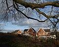 Houses on Sandpiper Way, Torquay - geograph.org.uk - 670831.jpg