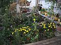 HyeLandz Eco Village Resort (9).jpg