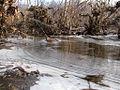 Ice On The Milton State Park.jpg