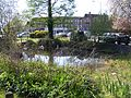 Ickenham pond - April 2011.JPG