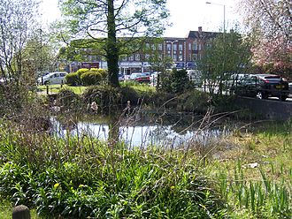 Ickenham - View of Ickenham village pond
