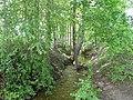Ilgio saltinis (4) - panoramio.jpg