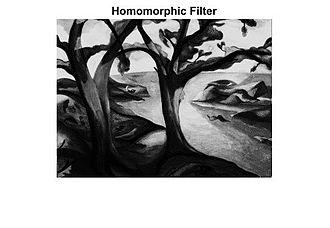 Homomorphic filtering - Figure 2: Applying homomorphic filter to original image