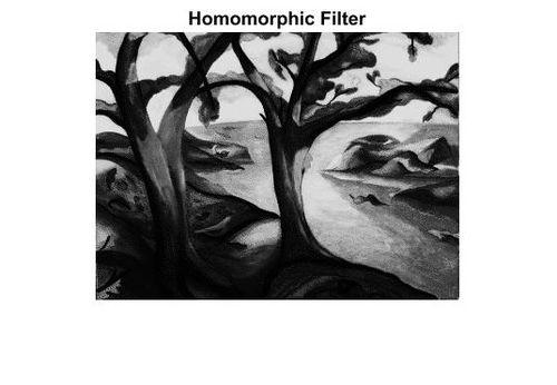 Homomorphic filtering - Wikipedia