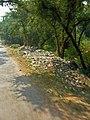 India-5868 (2214495455).jpg
