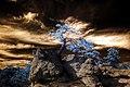 Infrared HDR Palmer Park Colorado Springs (3286311370).jpg