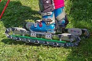 Grass skiing - Tracked grass skis