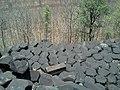 Interlocked basalt rocks from top at the Kavadia Pahaad.jpg