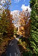 Isabella Stewart Gardner Museum Boston November 2016 003.jpg