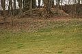 Isigatweiler-5946.jpg