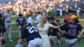 Ivanka Trump at baseball game.png