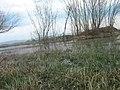 Ivolginsky District, Buryatia, Russia - panoramio.jpg