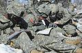 JBER Expert Infantryman Badge testing 130422-F-LX370-936.jpg