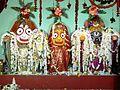 Jagannath, Balabhadra & Subhadra.JPG