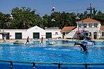 Jardim Zoológico de Lisboa 2017 20.jpg