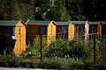 Jardins ouvriers de Teyran 1.jpg