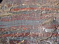 Jaspilite banded iron formation (Soudan Iron-Formation, Neoarchean, ~2.69 Ga; Stuntz Bay Road outcrop, Soudan Underground State Park, Soudan, Minnesota, USA) 46 (19039432949).jpg