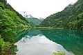 Jiuzhaigou, Aba, Sichuan, China - panoramio (10).jpg