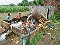 Joy of Summer in Punjab Pakistan.jpg
