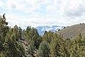 Jumbo Grade Trail - panoramio (16).jpg