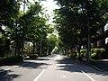 Ka3 1 Nagareyama-city.JPG