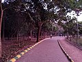Kadri Park in Mangalore - Alley.jpg