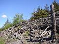Kamenné moře na Jedlové.JPG