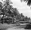 Kanaal, waarschijnlijk in het district Coronie, Bestanddeelnr 252-5727.jpg