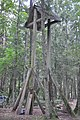 Kannenieku kapi, Baldones pagasts, Baldones novads, Latvia - panoramio (1).jpg