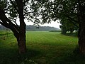 Kevelaer-Winnekendonk NSG Fleuthbenden PM18-09.jpg