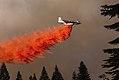 King Fire 2014 (15244423198).jpg