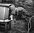 King Gustaf VI Adolf in 1967 JvmKBDB13522 01.jpg