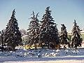 Kirovskiy rayon, Samara, Samarskaya oblast', Russia - panoramio (41).jpg