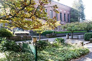 University of Oregon - Outside the front of the Knight Library