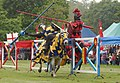 Knights of Royal England at Warwick Castle.jpg