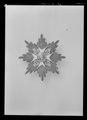 Kraschan för kommendör med stora korset av S-t Olafsorden, Norge, lika som m, 1873 - Livrustkammaren - 43358.tif