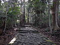 Kumano Kodo pilgrimage route Daimon-zaka World heritage 熊野古道 大門坂02.JPG