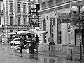 Kwiaciarkom na Chmielnej nie straszna ulewa - panoramio.jpg