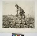 Labor (ou Le paysan à la houe), d'après Millet (NYPL b14693583-1153439).tiff